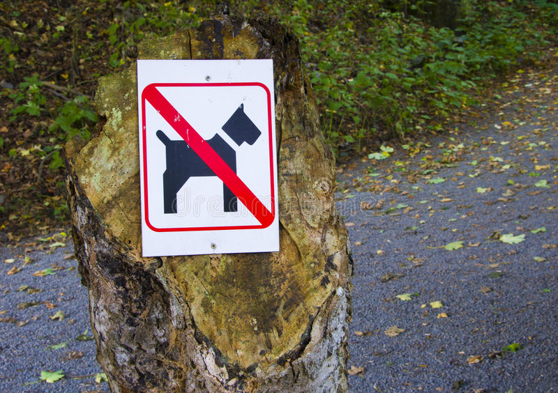 Dogs not allowed. For this area royalty free stock photo