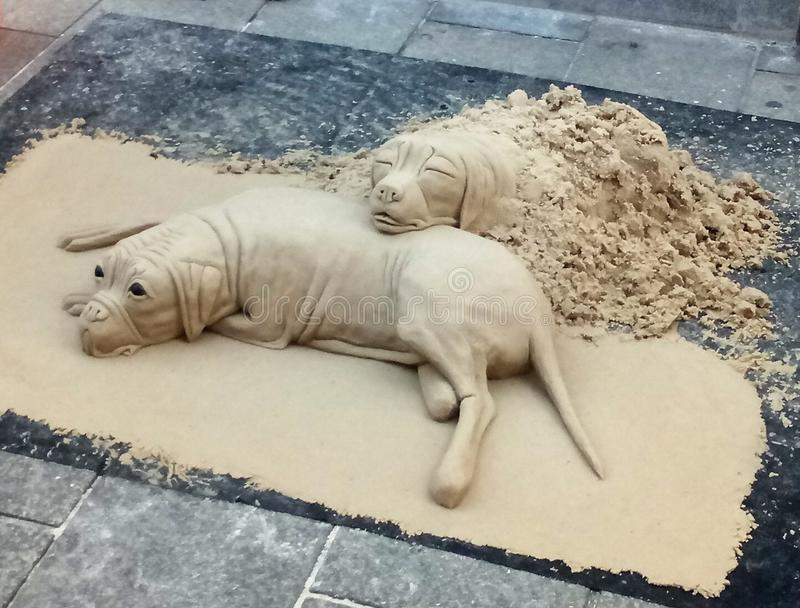 Dogs from sand stock image