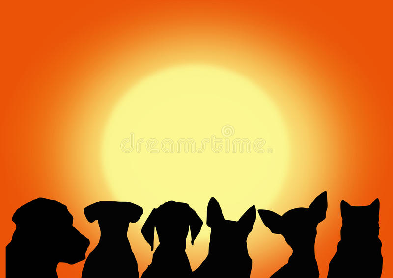 Dogs On The Sunset Background. Vector File Royalty Free Stock Images