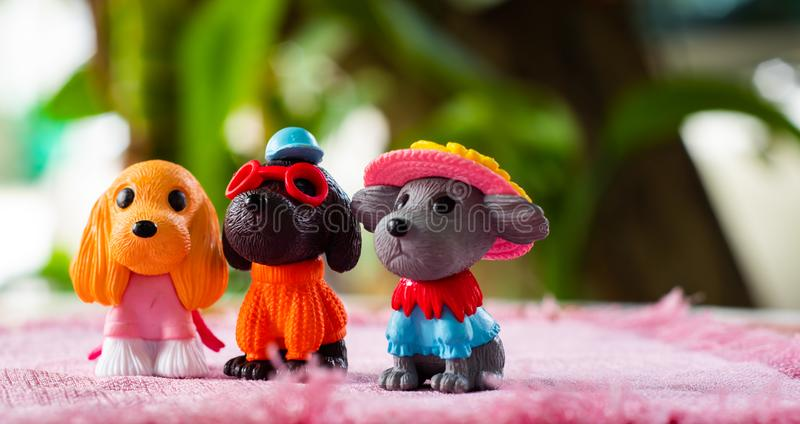 Dogs toys , cutes decorations in dogs cafe in Chiangmai province northern of Thailand. Dogs toys cutes decorations in dogs cafe in Chiangmai province northern royalty free stock image