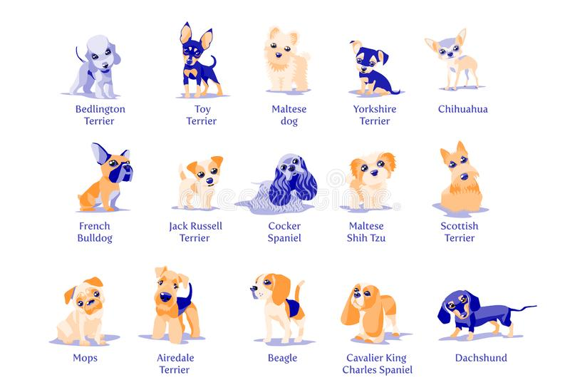 Vector illustration of dogs puppies different breeds vector illustration