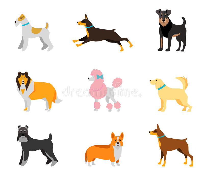 Dogs vector set of icons and illustrations royalty free illustration