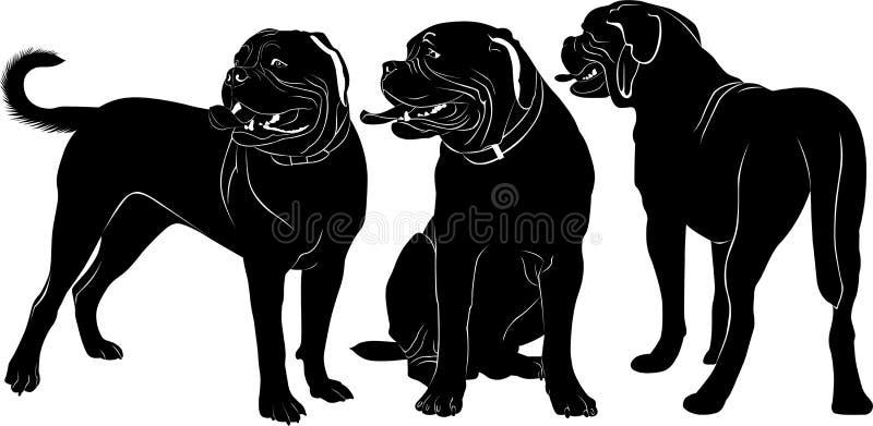 Dogue de Bordeaux illustration de vecteur