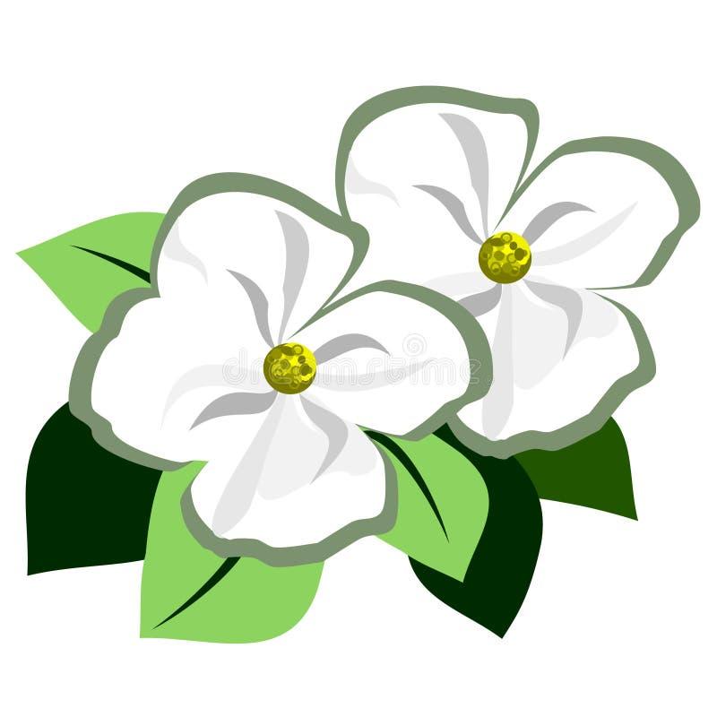 Free Dogwood Flower Accent Stock Photo - 127926970