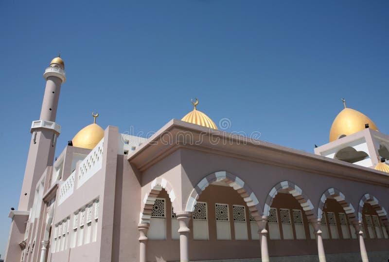 doha moské qatar royaltyfria bilder