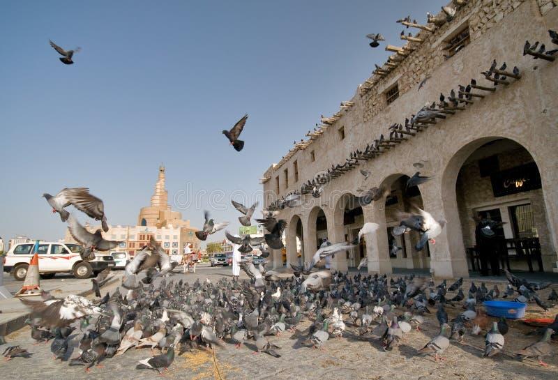 Doha old Market Souq Waqif buildings. Pigeons in an old market Souq Waqif, Doha Qatar stock image