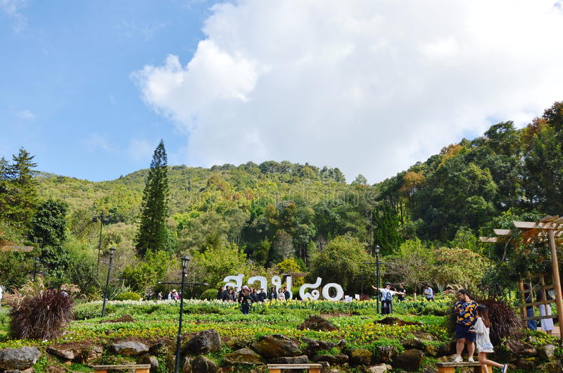 Doi Ang Khang first royal agricultural station in Thailand stock photo