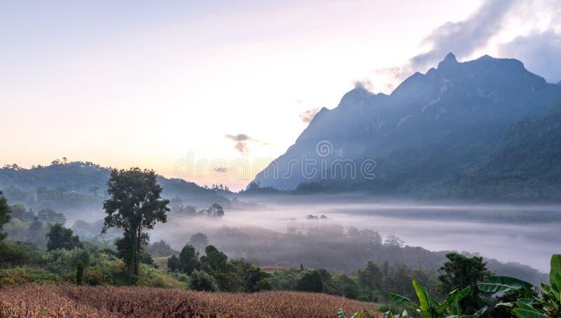Doi Luang Chiang Dao, Chiang Mai Thailand Nov 2015 fotos de archivo libres de regalías