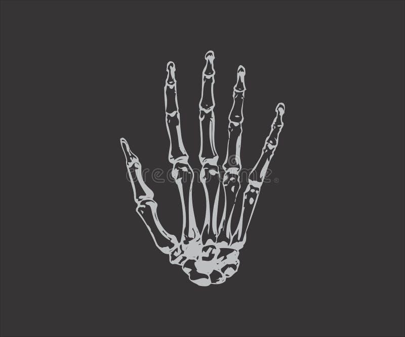 Doigt squelettique image libre de droits