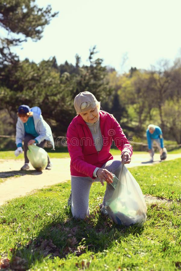 Determined volunteers gathering litter in the forest. Doing good work. Concentrated old women gathering litter while other volunteers helping her stock photo