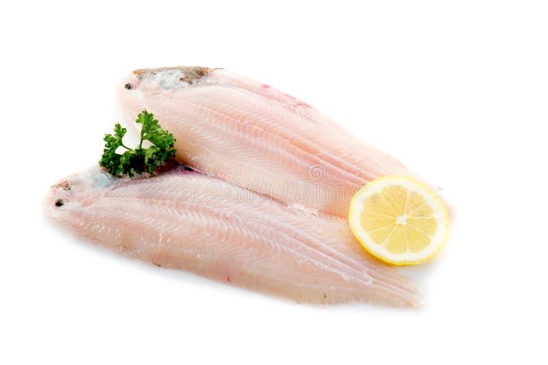 Dois únicos peixes prontos para cozinhar imagens de stock royalty free