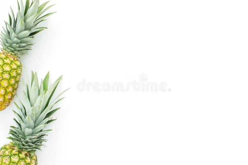 Dois abacaxis em um fundo branco fotografia de stock royalty free