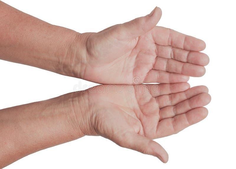 Dois abrem as mãos vazias da mulher adulta com fundo branco fotografia de stock royalty free