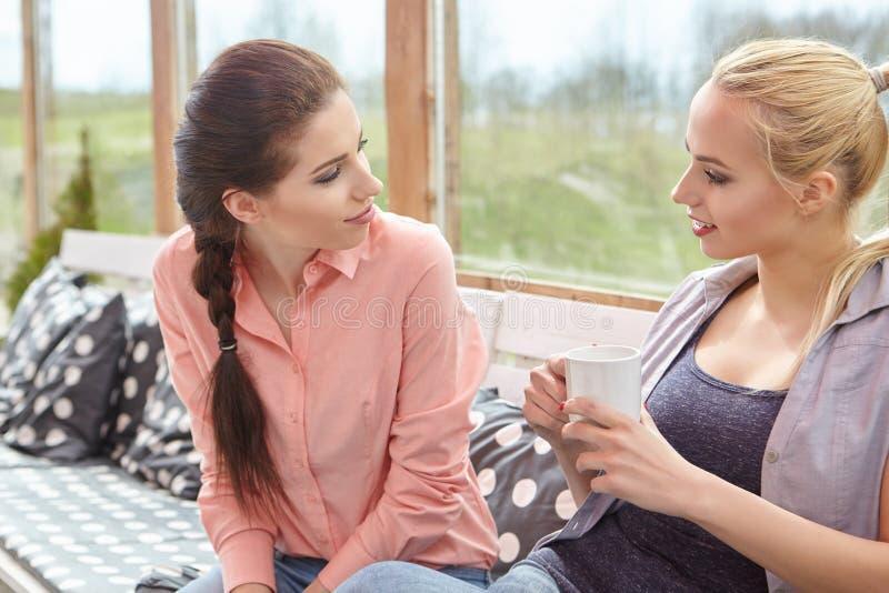 Dois amigos das mulheres que falam guardando copos de café foto de stock royalty free