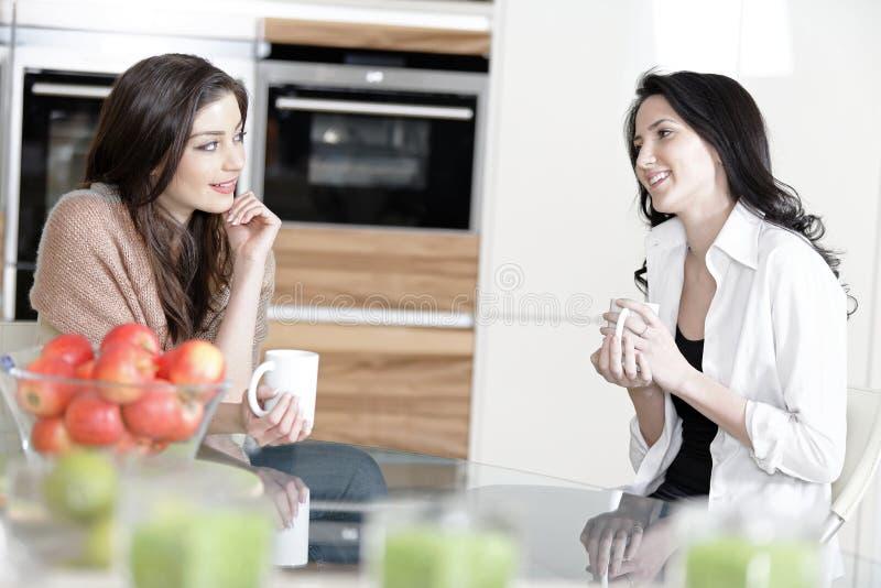 Dois amigos em uma cozinha imagem de stock