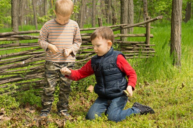 Dois amigos novos que jogam na floresta fotografia de stock