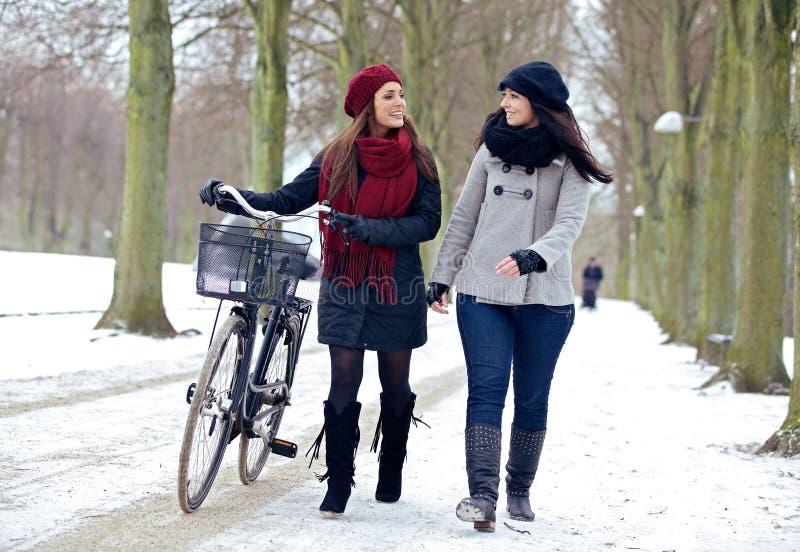 Dois amigos que apreciam uma caminhada em um parque do inverno imagem de stock