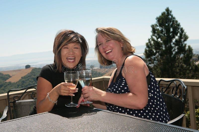 Dois amigos que compartilham do vinho ao ar livre imagem de stock