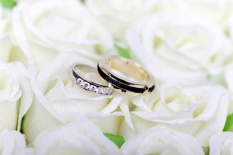 Dois anéis de casamento no branco imagem de stock