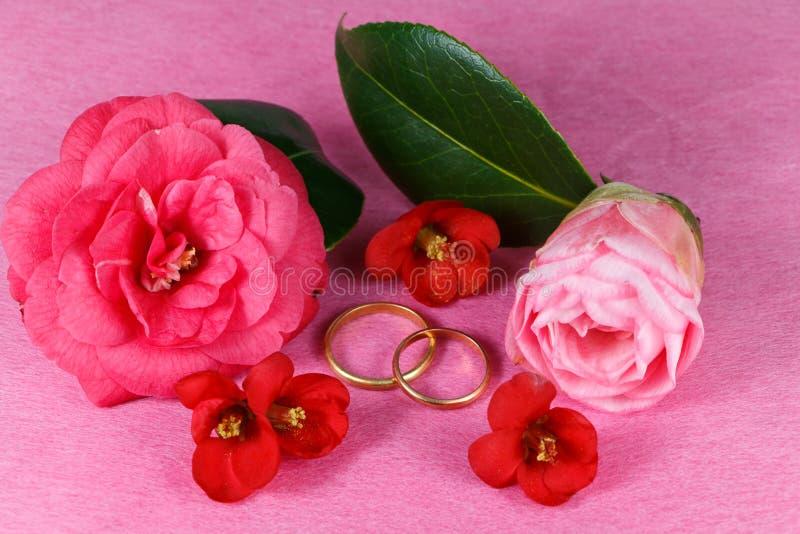 Dois anéis e flores de casamento foto de stock royalty free