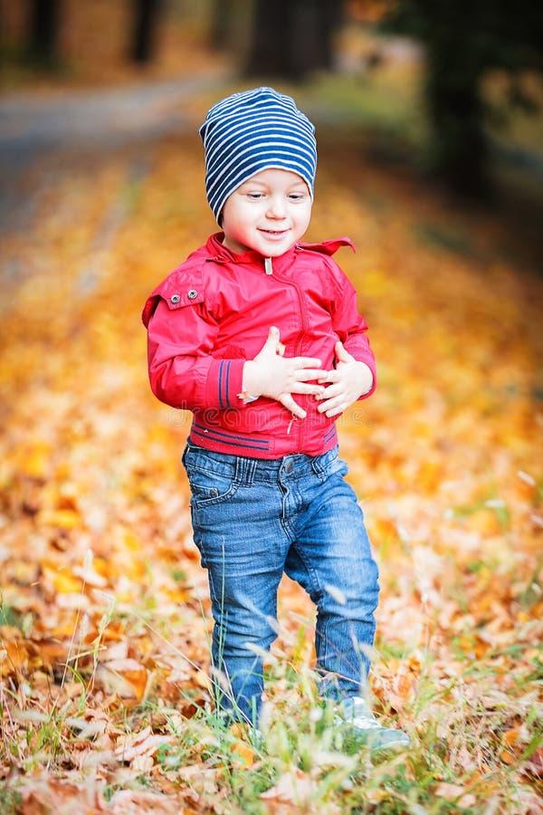 Dois anos de criança idosa têm o divertimento exterior no parque do outono foto de stock royalty free