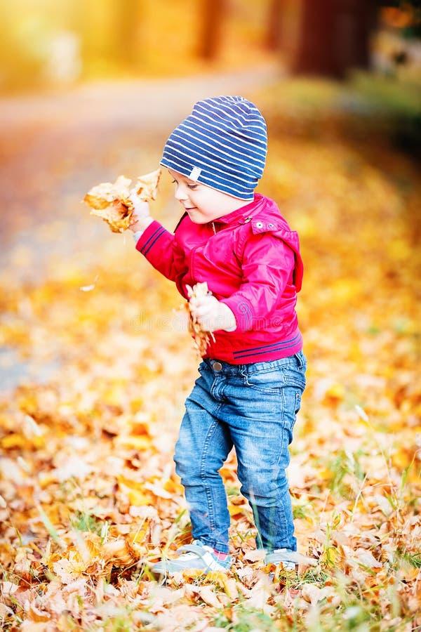Dois anos de criança idosa têm o divertimento exterior no parque do outono foto de stock