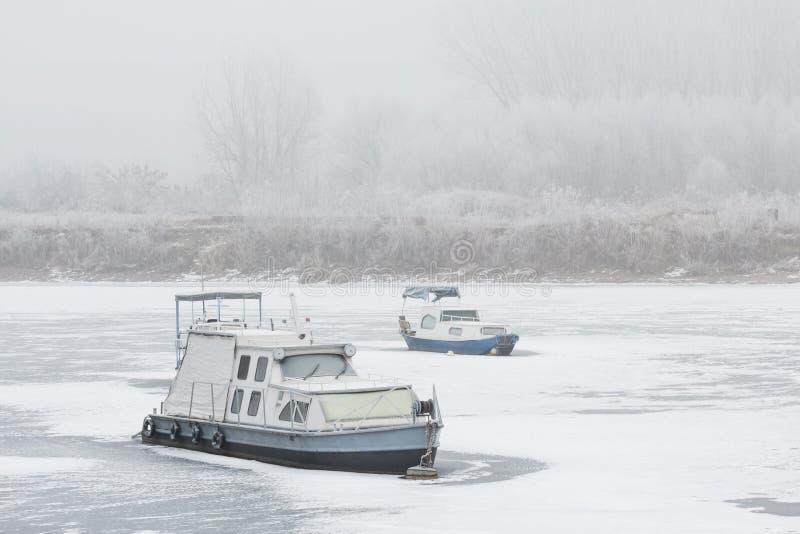 Dois barcos velhos destruíram em um rio congelado Tisa fotos de stock royalty free