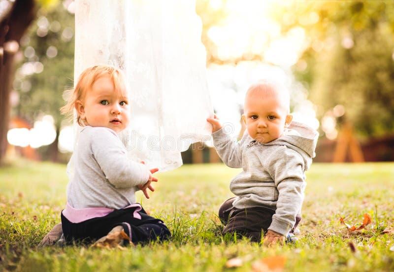 Dois bebês na grama no jardim imagem de stock