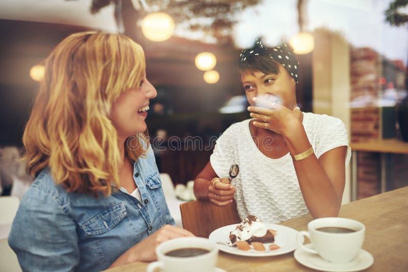 Dois bons amigos que apreciam uma xícara de café fotos de stock royalty free