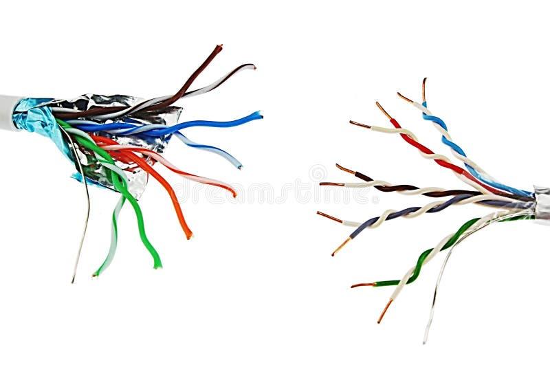 Dois cabos de cobre da rede de UTP do twisted pair que estão entre si, um com a folha de alumínio individual que protege, backgr  imagem de stock royalty free