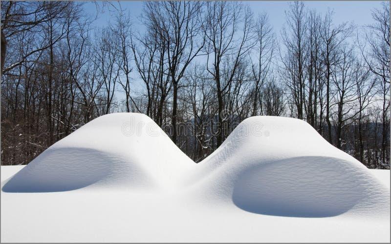Dois carros sob a neve após o snowstrom fotografia de stock