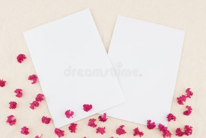 Dois cartões brancos vazios foto de stock