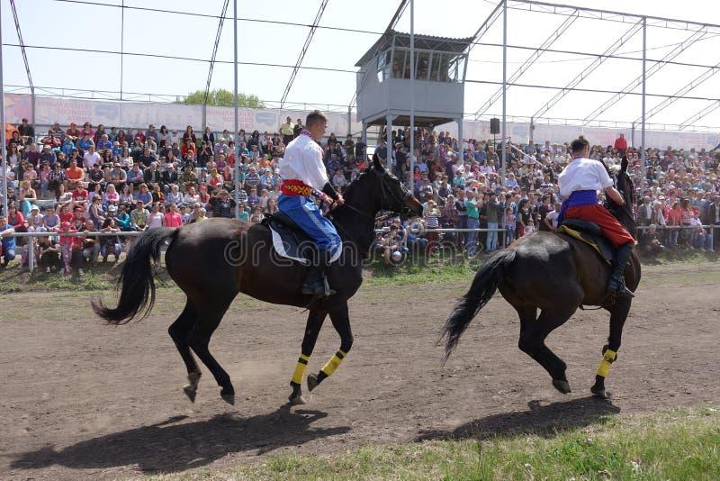 Dois cavaleiros em trajes ucranianos nacionais montam cavalos na trilha foto de stock