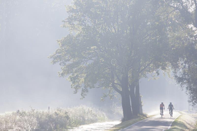 Dois ciclistas na estrada secundária nos Países Baixos na manhã enevoam-se fotos de stock