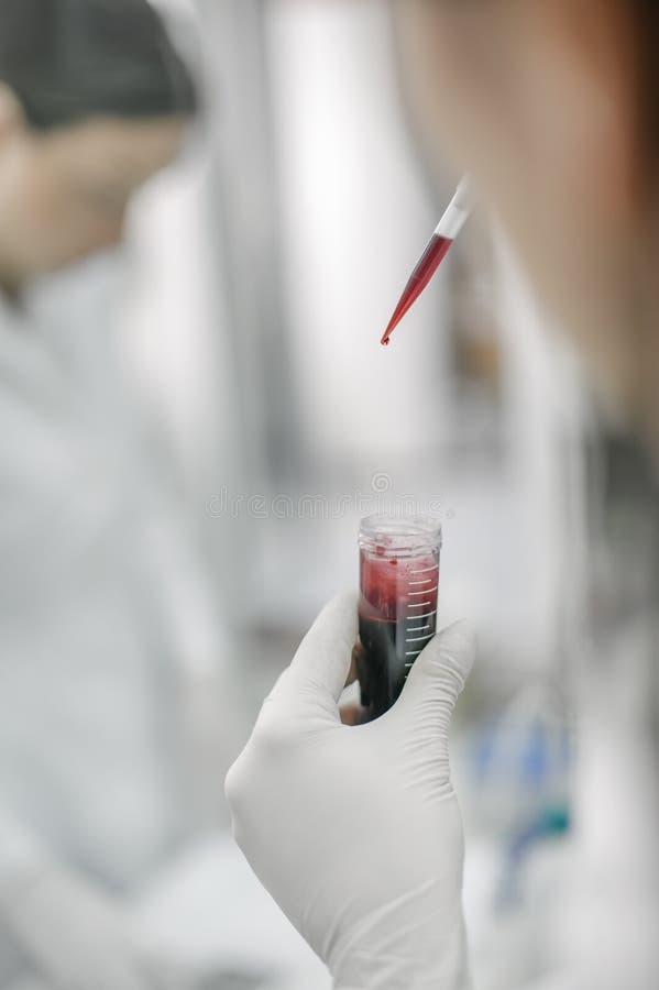 Dois cientistas nos tubos de ensaio de enchimento do laboratório com pipeta imagens de stock