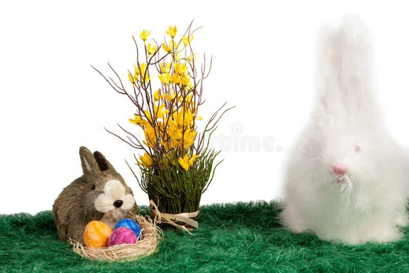 Dois coelhos de coelhinho da Páscoa peludos bonitos imagens de stock royalty free