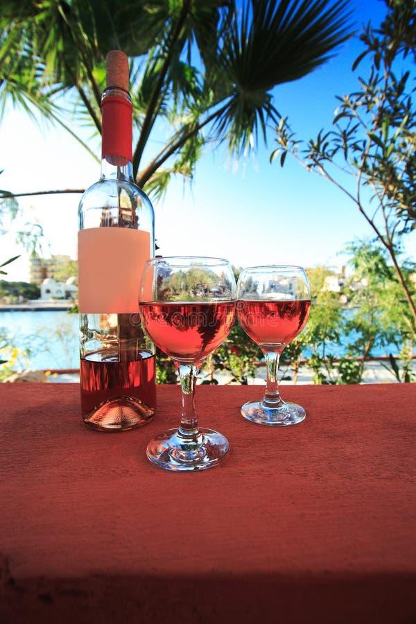 Dois copos de vinho imagem de stock royalty free