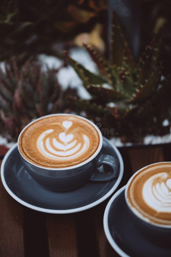 Dois copos do cappuccino fotos de stock royalty free