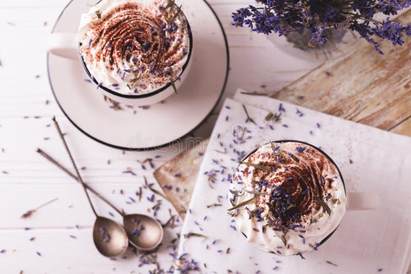 Dois copos do chocolate quente com creme chicoteado imagem de stock royalty free