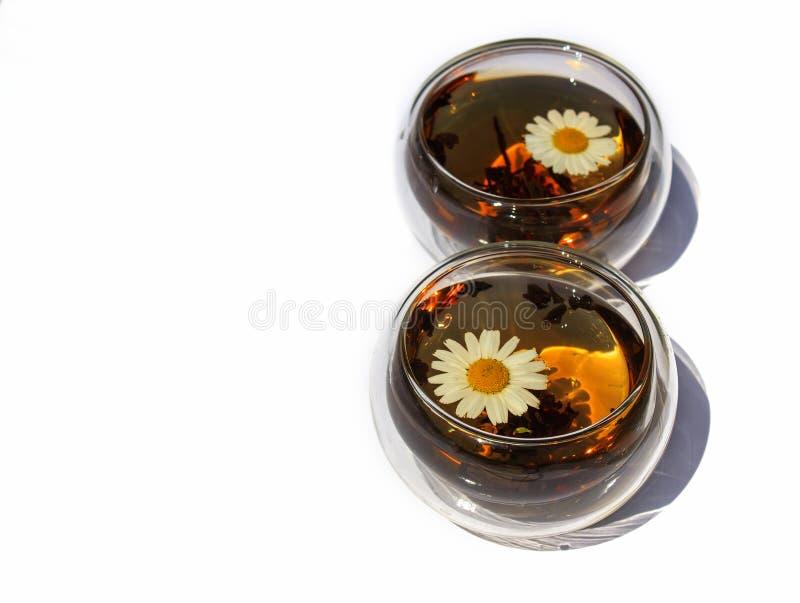 Dois copos ou vidros do chá de camomila em um fundo branco imagem de stock
