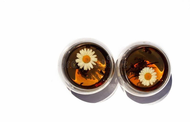 Dois copos ou vidros do chá de camomila em um fundo branco fotografia de stock