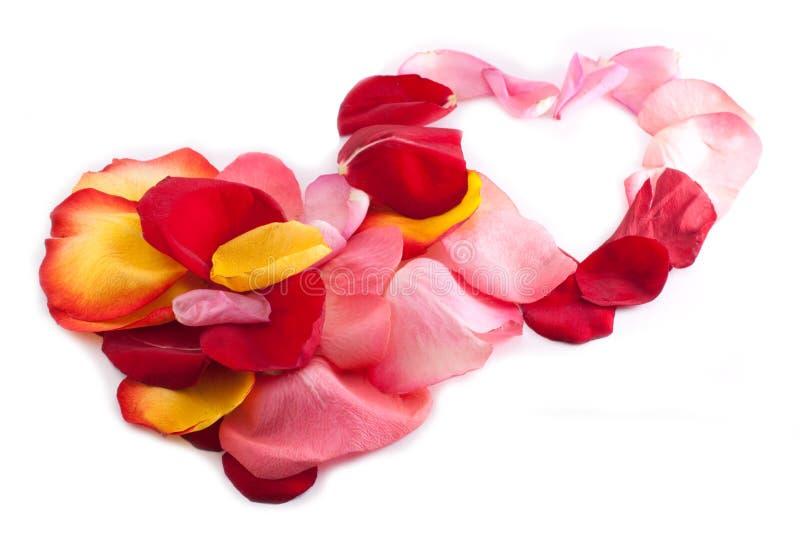 Download Dois Corações De Bloqueio Com Pétala Cor-de-rosa Foto de Stock - Imagem de junto, cor: 12810800