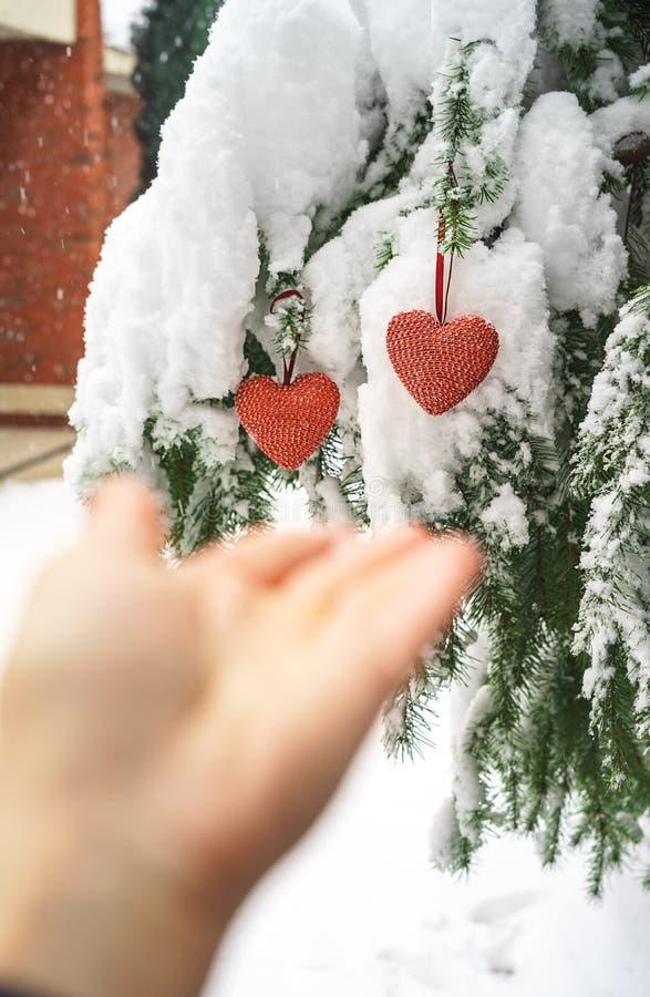Dois corações e mãos vermelhos de matéria têxtil no fundo nevado pesado do ramo do abeto, perto da casa do tijolo vermelho Feliz  imagens de stock