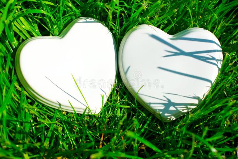 Dois corações lustrosos brancos da porcelana na grama verde; verão Cart?o de casamento; Uma nota do amor fotos de stock