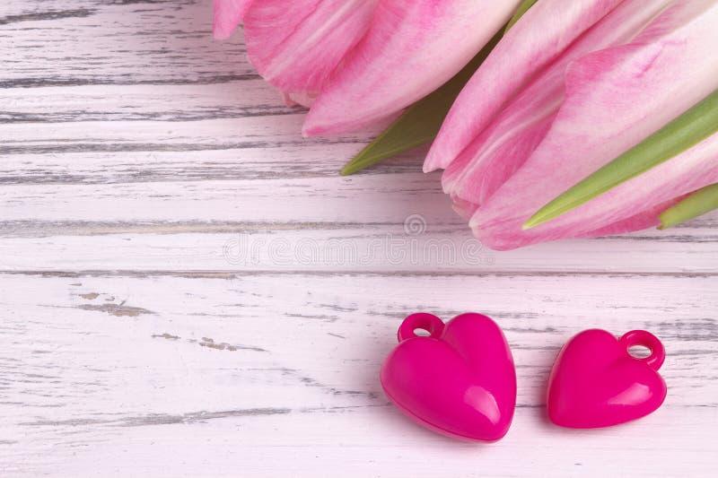 Dois corações roxos com as tulipas cor-de-rosa no branco pintaram o fundo de madeira branco rústico Dia do Valentim fotografia de stock royalty free