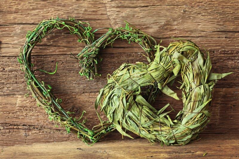 Dois corações verdes foto de stock royalty free