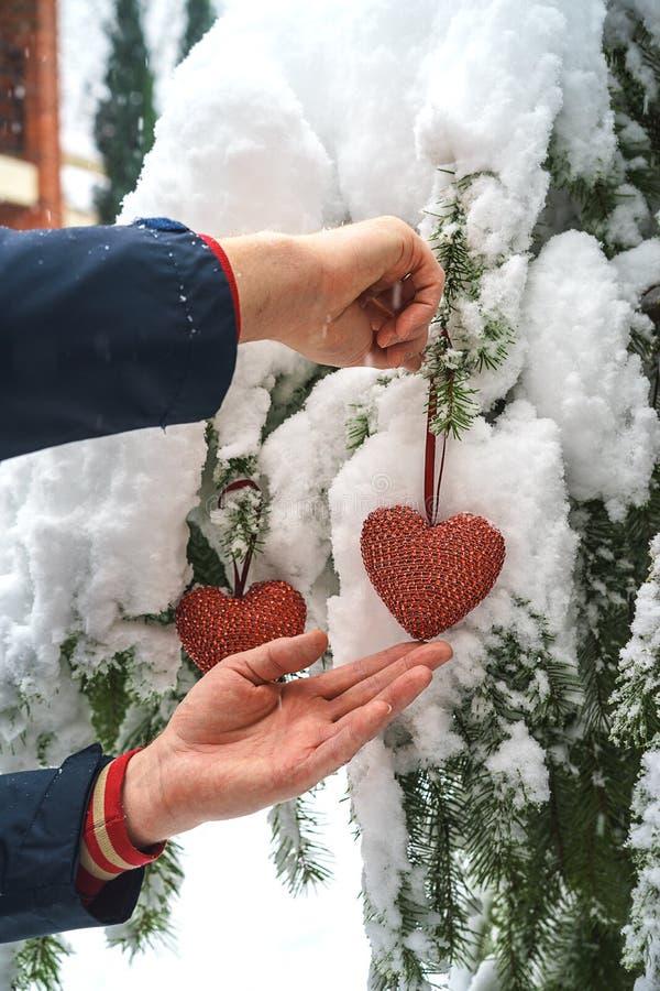 Dois corações vermelhos de matéria têxtil e mãos do homem no fundo nevado pesado do ramo do abeto, perto da casa do tijolo vermel foto de stock royalty free