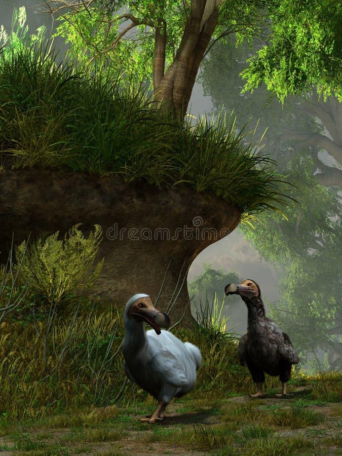 Dois Dodo Birds ilustração stock
