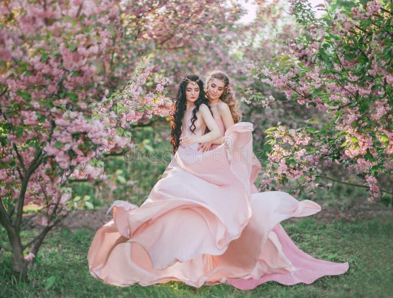 Dois duendes surpreendentes andam no jardim fabuloso da flor de cerejeira Princesas em luxuoso, longo, vestidos do rosa que vibra imagem de stock royalty free