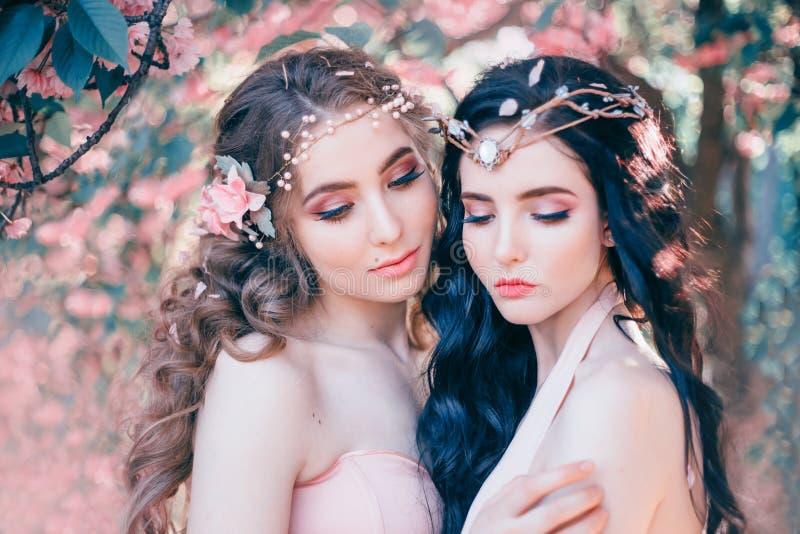 Dois duendes surpreendentes com um close-up delicado da composição da mola Louro e morena com por muito tempo, cabelo saudável, o fotografia de stock